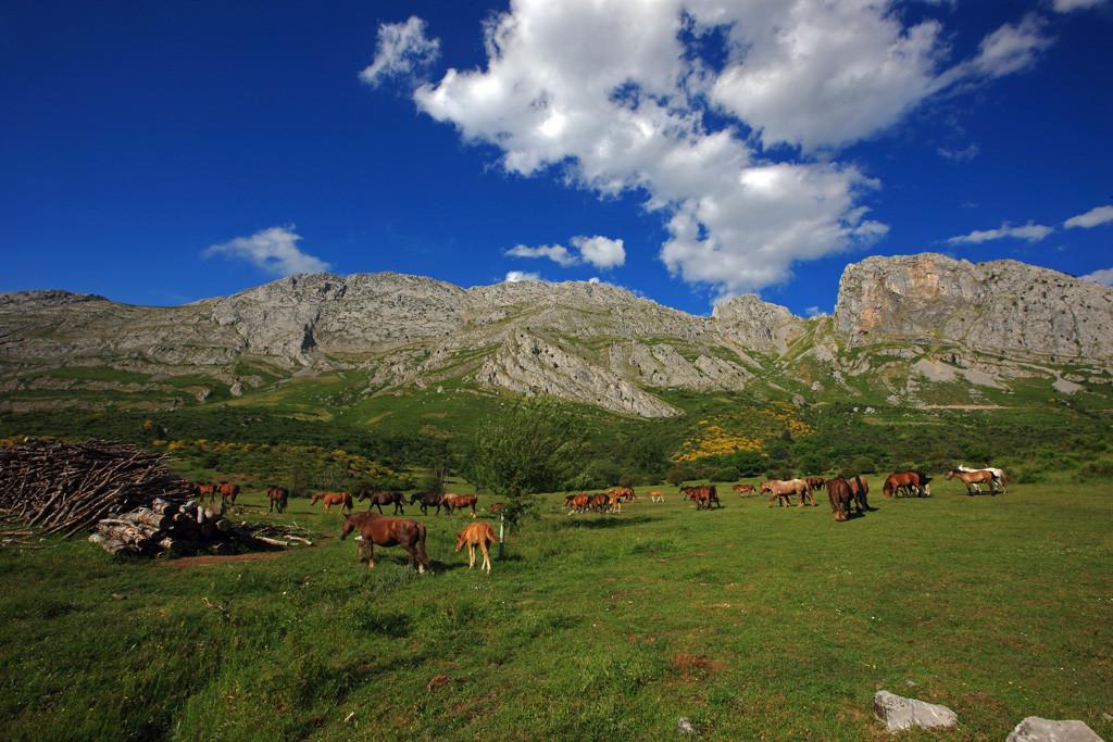 02 Parque Regional Montanu0303a de Rianu0303o y Mampodre