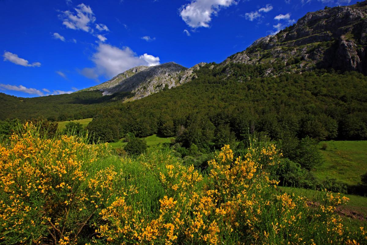 04 Parque Regional Montanu0303a de Rianu0303o y Mampodre