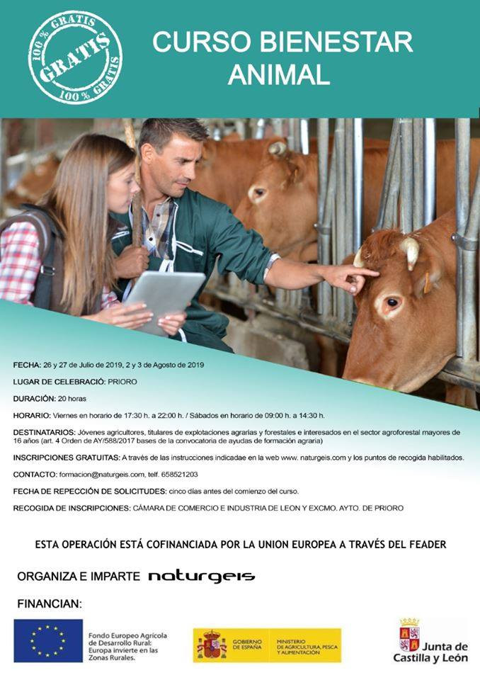 Prioro curso bienestar animal