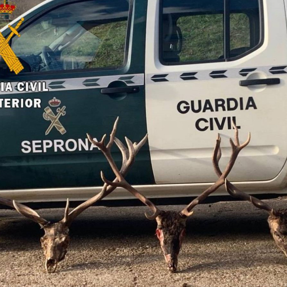 Guardia civil palencia denuncias montaña palen